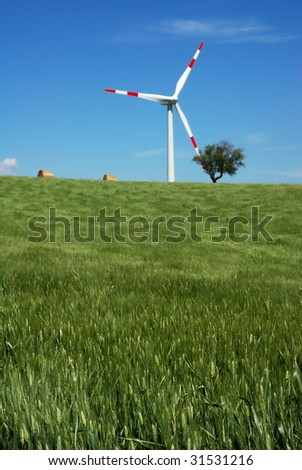 Green wheat field with solitary wind turbine in background (selective focus on wheat in foreground)