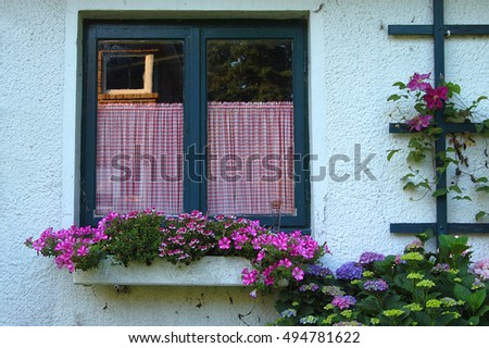 green window with flower box