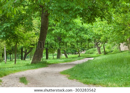 Green woodland scene of path disappearing into the distance. - stock photo