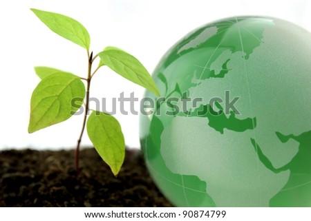 Green world - stock photo