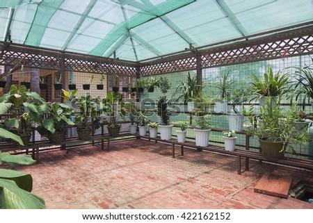 greenhouse,conservatory - stock photo