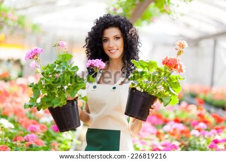 Greenhouse employee holding flowers - stock photo