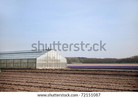 Greenhouse from glass exterior for agriculture in landscape