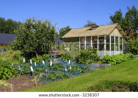 Greenhouse in a allotment garden. - stock photo