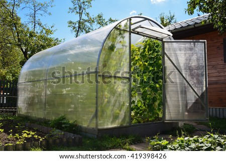 Greenhouse in back garden with cucumber plants - stock photo