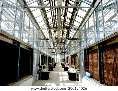 Greenhouse with the ecosystem of glass and metal with plants inside. - stock photo