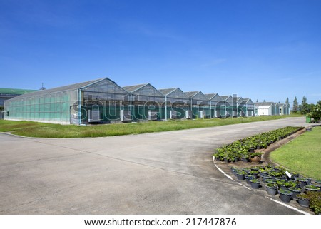 Greenhouses growing vegetables on background sky outdoors - stock photo