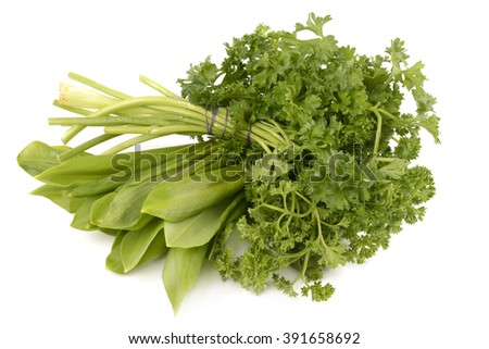 greens on a white background - stock photo