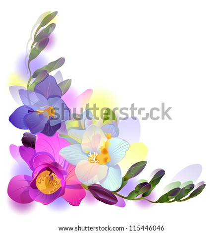 Greeting background with pictorial freesia flowers (see eps version in my portfolio) - stock photo