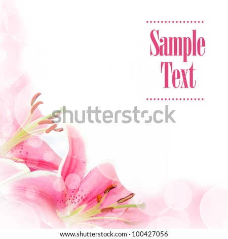 Greeting card with lily flower - stock photo