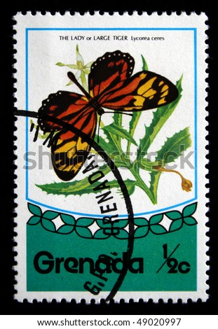 GRENADA - CIRCA 1970s: A stamp printed in Grenada shows butterfly Lady or Large tiger - Lycirea ceres, circa 1970s