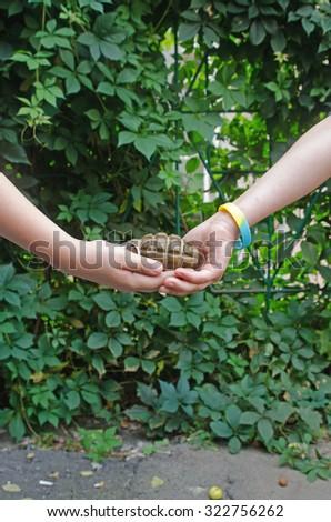 grenade in the hands of children. Social Poster - stock photo