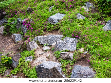 Grey stones in the green blooming garden. - stock photo