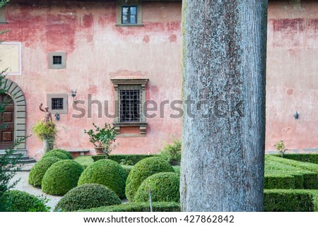 Grey tree trunk with lichen with formal garden hedges and topiary behind against pink wall of large building with grated windows and wooden door in archway - stock photo