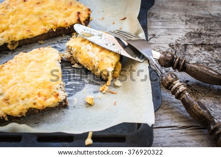 Grilled cheese sandwich, selective focus - stock photo