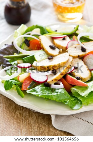 Grilled chicken salad with apple - stock photo