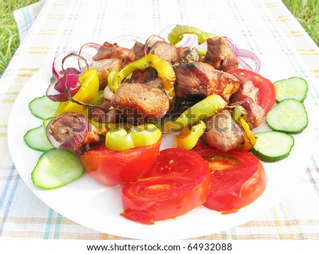 grilled cooked meat with pepper onion roasting on plate