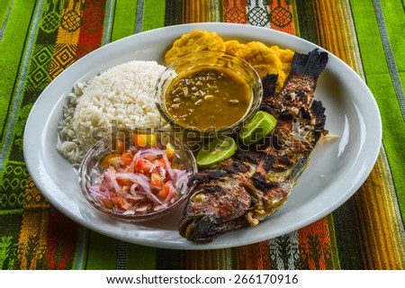 Grilled fish - Tilapia Rio Negro - with rice & salad served in a bar between Banos and Puyo. - stock photo