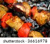 Grilled kebab and tomato - stock photo