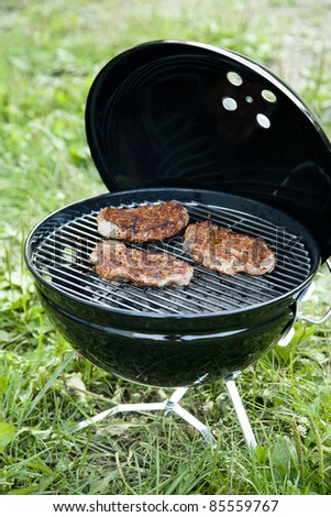 Grilled meat on a charcoal grill in the green grass - stock photo