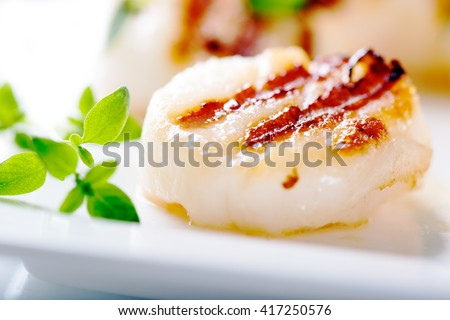 Grilled scallops with thyme leafs on white plate, close up - stock photo