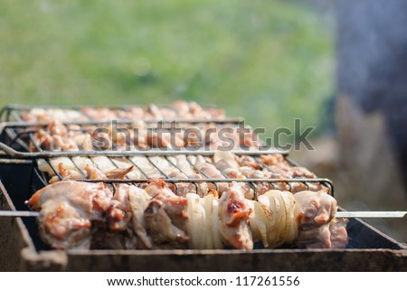 Grilling barbecue on  green grass background
