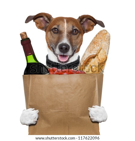 grocery bag dog wine tomatoes bread - stock photo