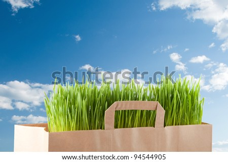Grocery paper bag with green grass over blue sky - stock photo