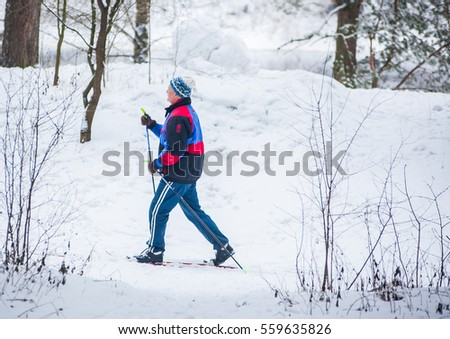 GRODNO, BELARUS - JANUARY 15, 2017. An old man exercises to improve his health by cross country skiing.