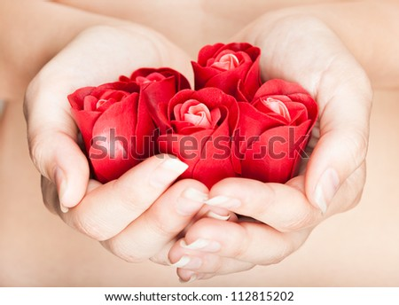 Groomed hands are full of rosebuds - stock photo