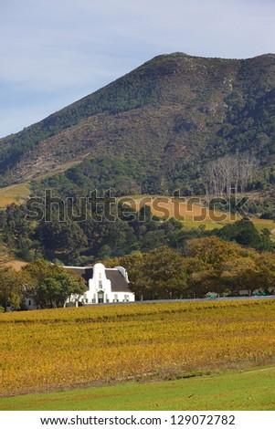 Groot Constantia, the finest surviving example of Cape Dutch architecture, and one of South Africa's foremost historical monuments tourist attractions, dates back to 1685.