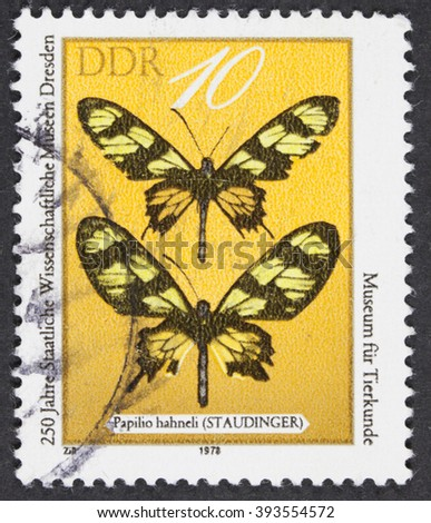 """GROOTEBROEK ,THE NETHERLANDS - MARCH 15,2016 : A post stamp printed in DDR shows a butterfly  """"Papilio hahneli"""", the series """"The 250th Anniversary of Dresden Museum of Science"""", circa 1978 - stock photo"""
