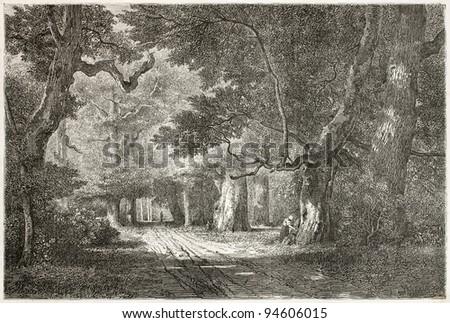 Gros-Fouteau old view, Fontainebleau forest, France. Created by Desjobert, published on Le Tour du Monde, Paris, 1867 - stock photo
