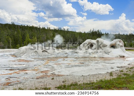 Grotto Geyser the most fancy geyser of the  Upper Geyser Basin in Yellowstone National Park - stock photo