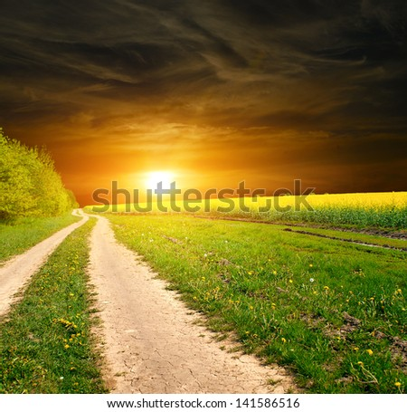 ground road in the green field