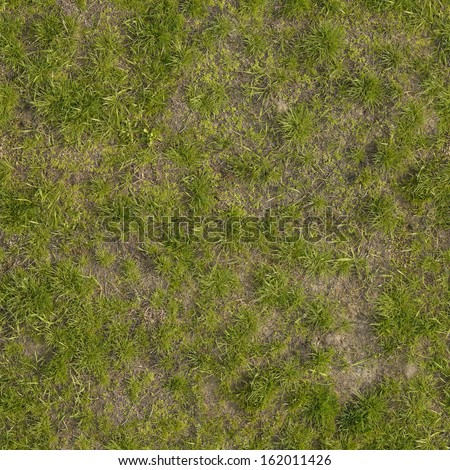 Ground texture with dry grass and small, rare tufts of green plants. - stock photo