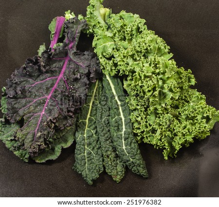 Group display of different varieties of kale leaves - stock photo