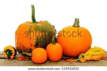 Group of autumn pumpkins and gourds on a white background - stock photo