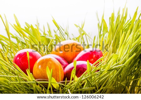 Group of brightly colored red and orange Easter eggs nestling in green grass - stock photo