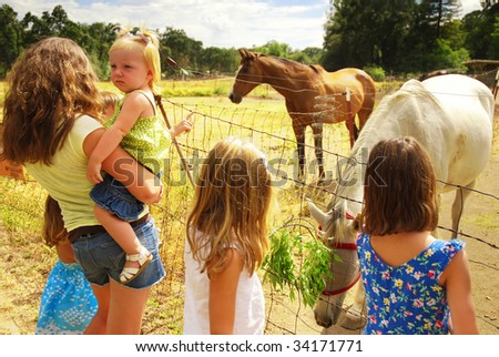 Group of children with an injured horse on a ranch - stock photo