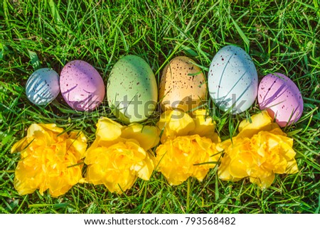 Group of colorful eggs on grass with flowers. Easter concept