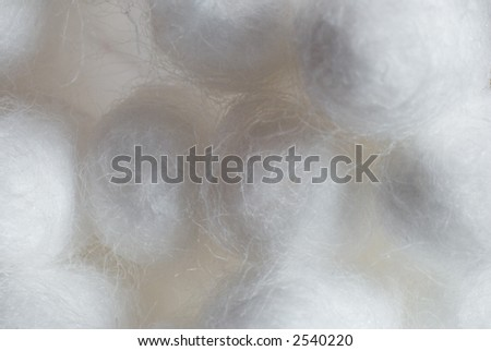 Group of cotton swabs (buds) - stock photo