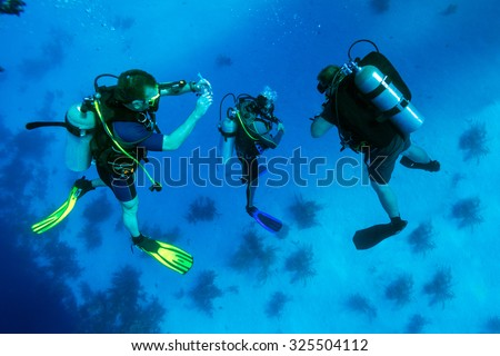 Group of divers on 5-min safety stop, Cuba - stock photo