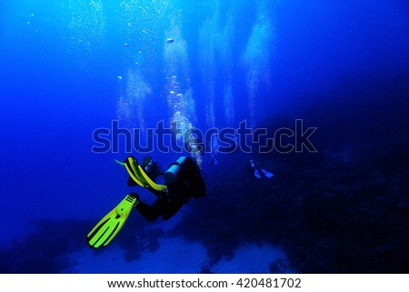 group of divers underwater on a coral reef