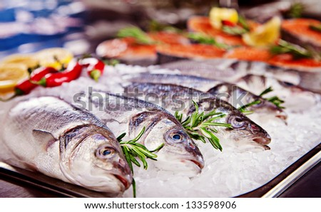 Group of fish served on ice with rosemary - stock photo