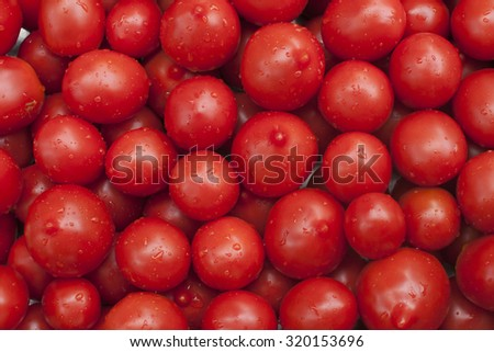 group of fresh and juicy tomatoes covered by drops of water collected at home in the garden
