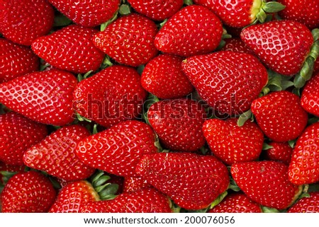 Group of fresh and large strawberries - stock photo