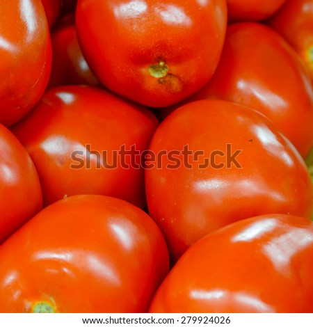 Group of fresh organically grown tomatoes  in the farmer market at Puyallup, Washington, USA. A close up full l frame of tomatoes . - stock photo