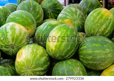 Group of fresh organically grown watermelons  in the farmer market at Puyallup, Washington, USA. A close up full l frame of watermelons. Panoramic style. - stock photo