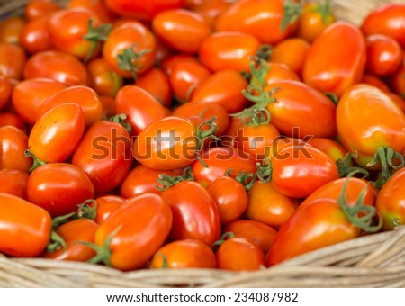 Group of fresh tomatoes in basket. - stock photo